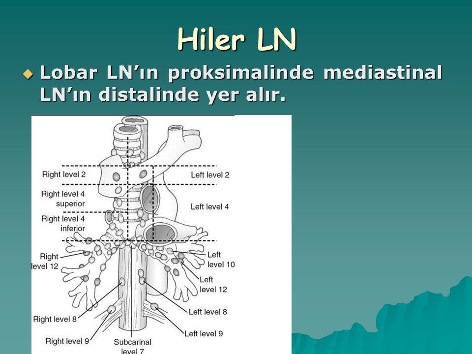 Hiler LN Lobar LN'ın proksimalinde mediastinal LN'ın distalinde yer alır.