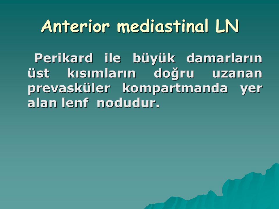 Anterior mediastinal LN