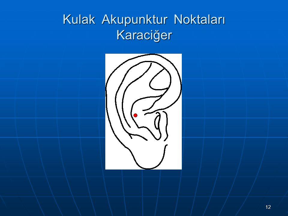 Kulak Akupunktur Noktaları Karaciğer