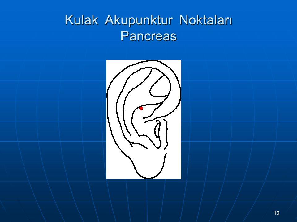 Kulak Akupunktur Noktaları Pancreas