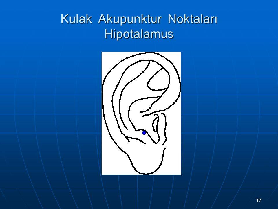 Kulak Akupunktur Noktaları Hipotalamus