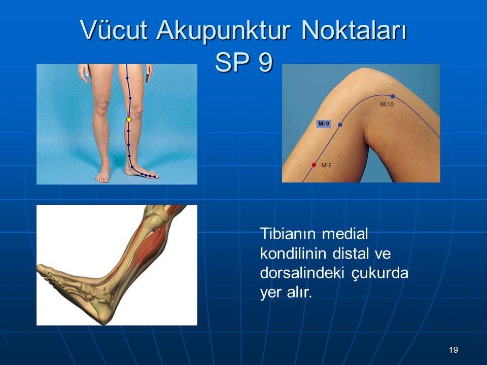 Vücut Akupunktur Noktaları SP 9
