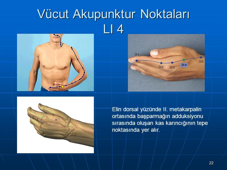 Vücut Akupunktur Noktaları LI 4