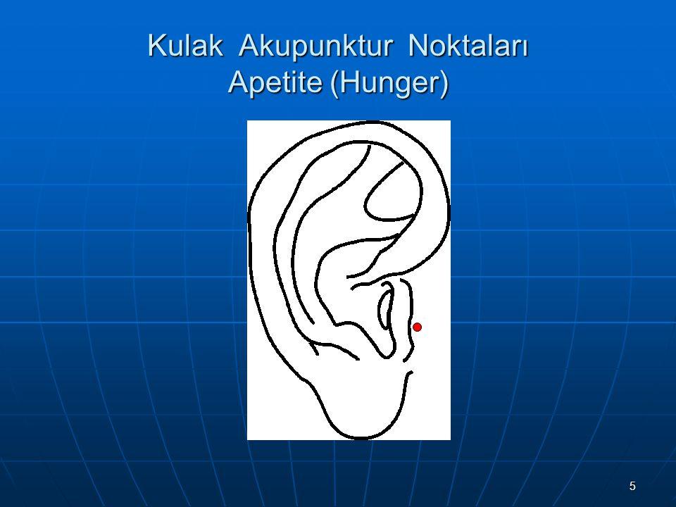 Kulak Akupunktur Noktaları Apetite (Hunger)