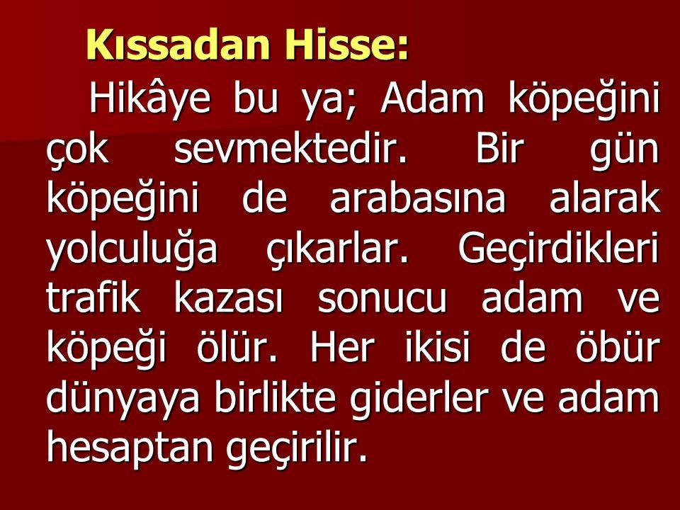 Kıssadan Hisse:
