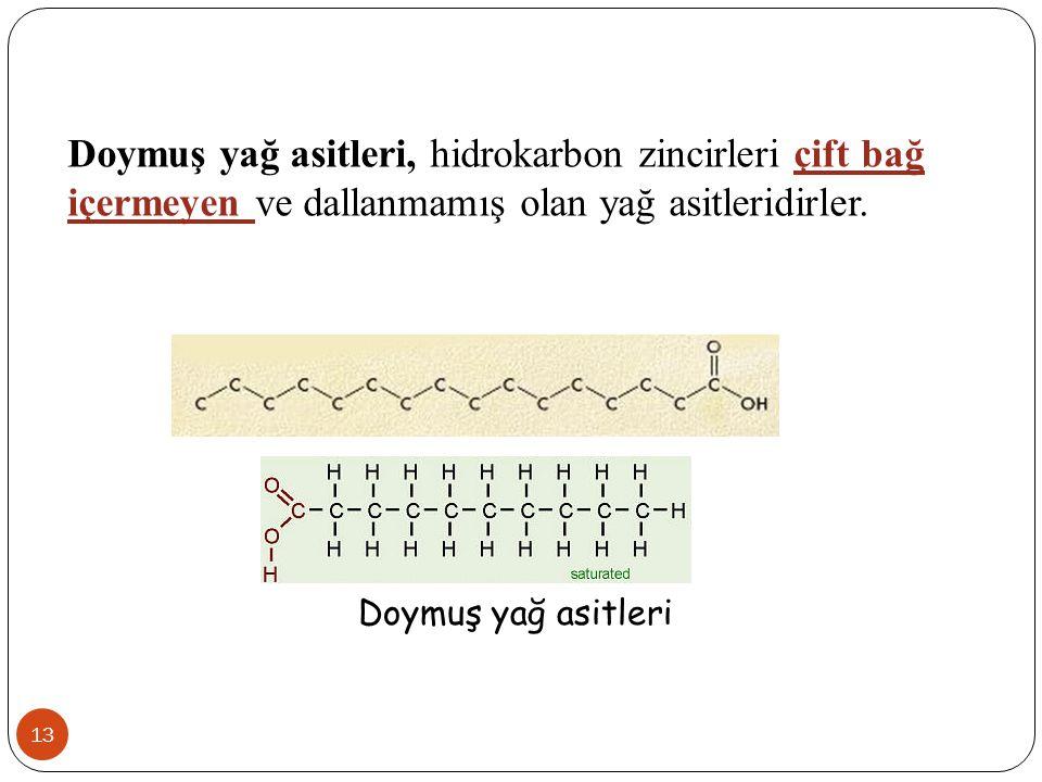 Doymuş yağ asitleri, hidrokarbon zincirleri çift bağ içermeyen ve dallanmamış olan yağ asitleridirler.