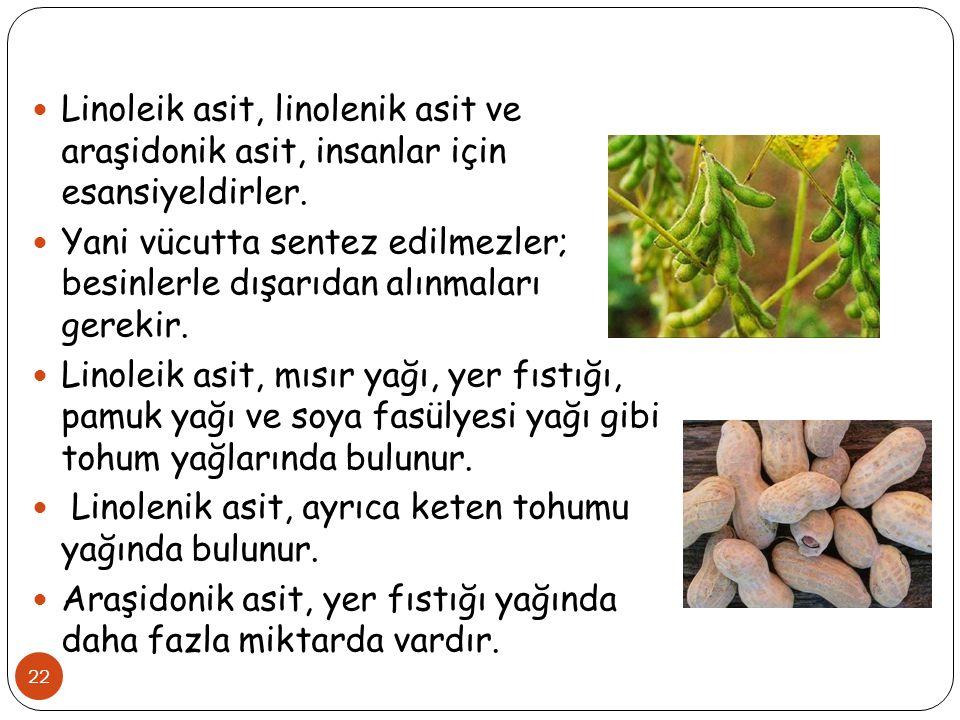 Linoleik asit, linolenik asit ve araşidonik asit, insanlar için esansiyeldirler.
