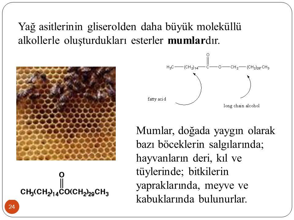 Yağ asitlerinin gliserolden daha büyük moleküllü alkollerle oluşturdukları esterler mumlardır.