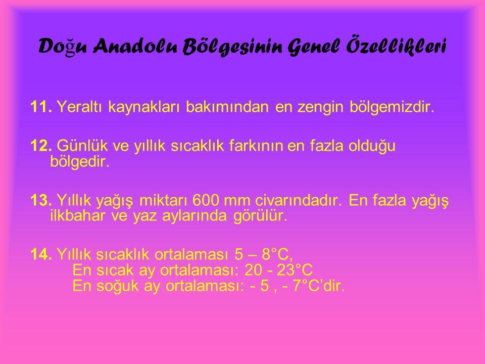Doğu Anadolu Bölgesinin Genel Özellikleri
