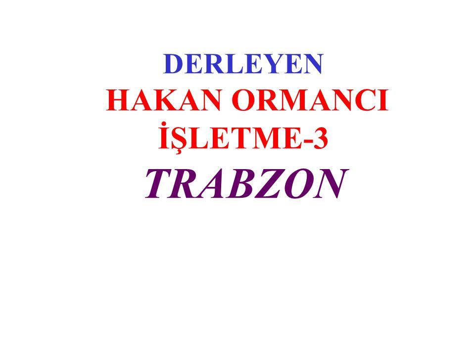 DERLEYEN HAKAN ORMANCI İŞLETME-3 TRABZON