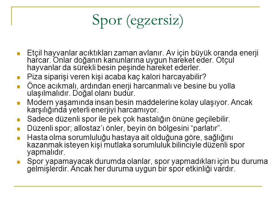 Spor (egzersiz)