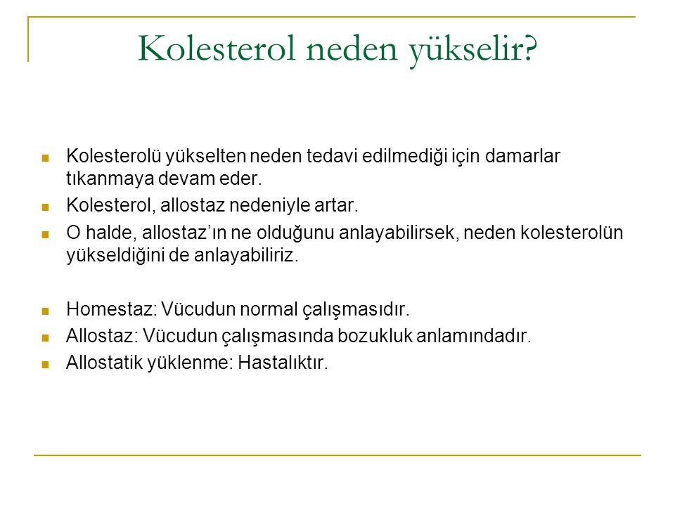 Kolesterol neden yükselir