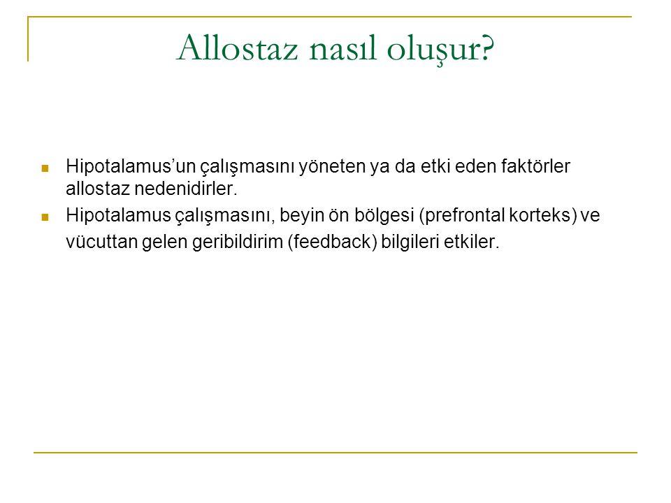 Allostaz nasıl oluşur Hipotalamus'un çalışmasını yöneten ya da etki eden faktörler allostaz nedenidirler.