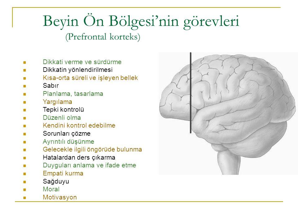 Beyin Ön Bölgesi'nin görevleri (Prefrontal korteks)