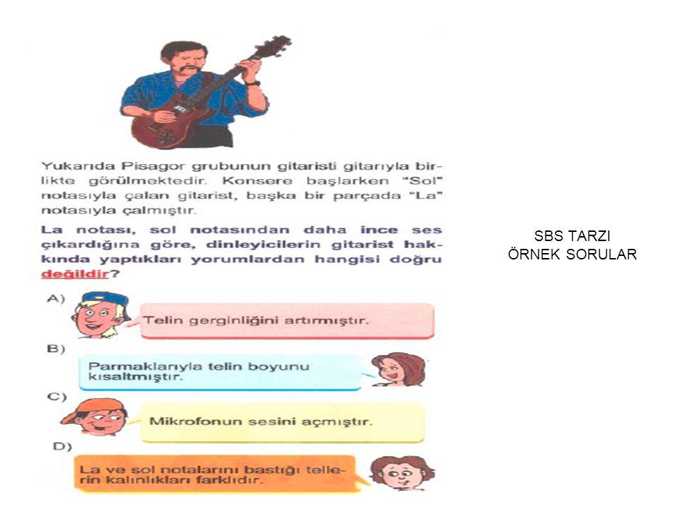 SBS TARZI ÖRNEK SORULAR