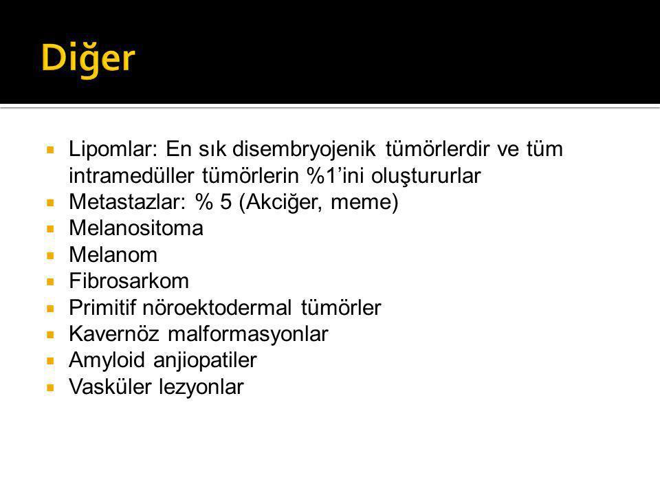 Diğer Lipomlar: En sık disembryojenik tümörlerdir ve tüm intramedüller tümörlerin %1'ini oluştururlar.