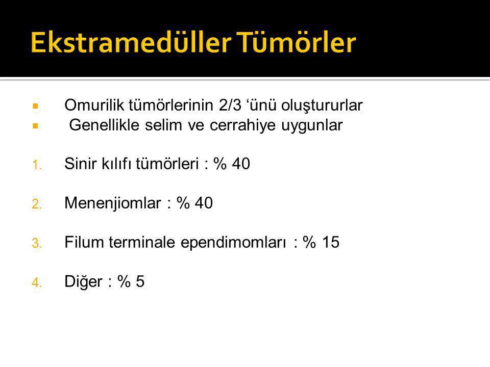 Ekstramedüller Tümörler
