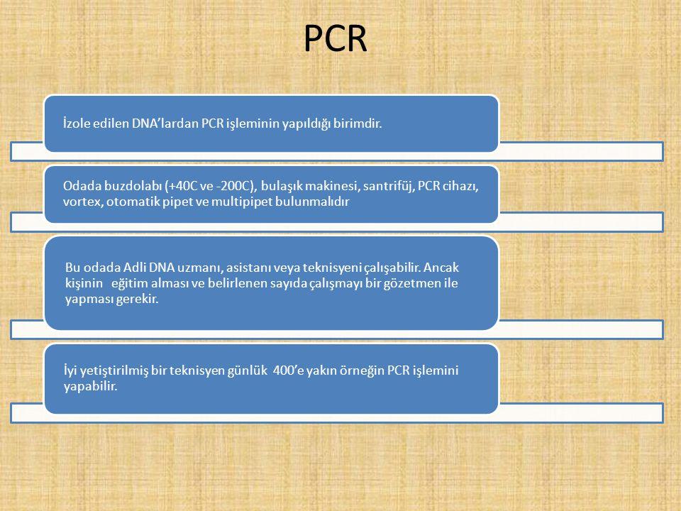 PCR İzole edilen DNA'lardan PCR işleminin yapıldığı birimdir.