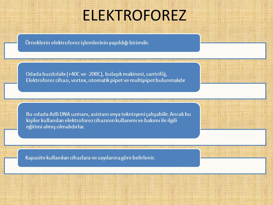 ELEKTROFOREZ Örneklerin elektroforez işlemlerinin yapıldığı birimdir.