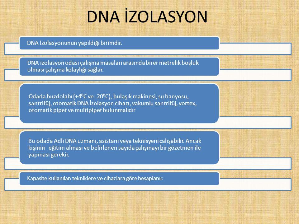 DNA İZOLASYON DNA İzolasyonunun yapıldığı birimdir.