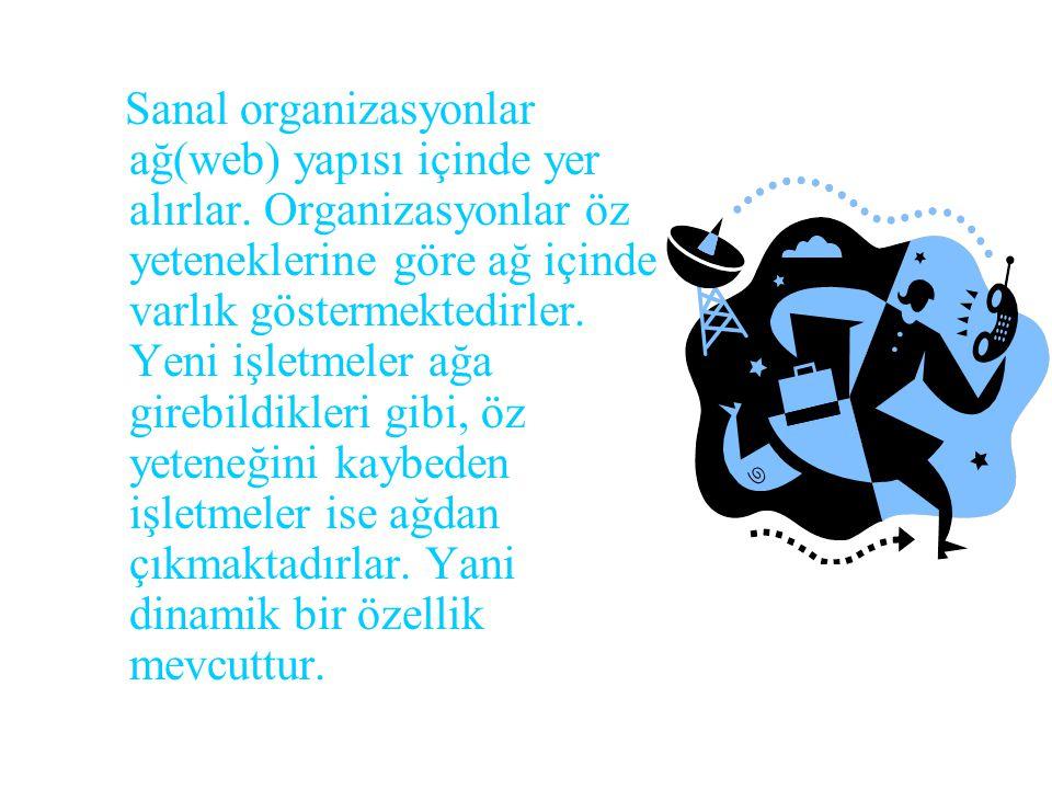 Sanal organizasyonlar ağ(web) yapısı içinde yer alırlar