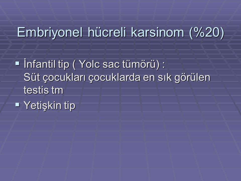 Embriyonel hücreli karsinom (%20)