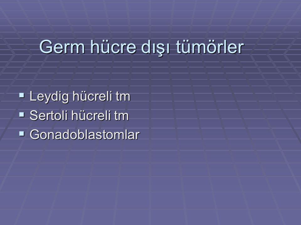 Germ hücre dışı tümörler