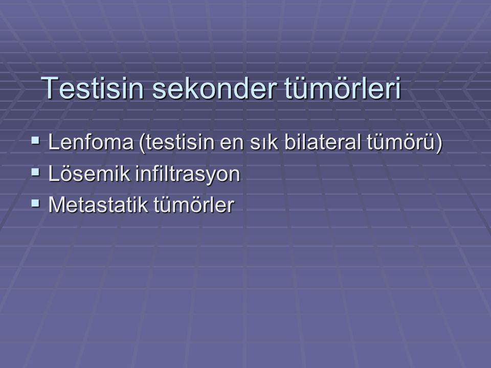 Testisin sekonder tümörleri