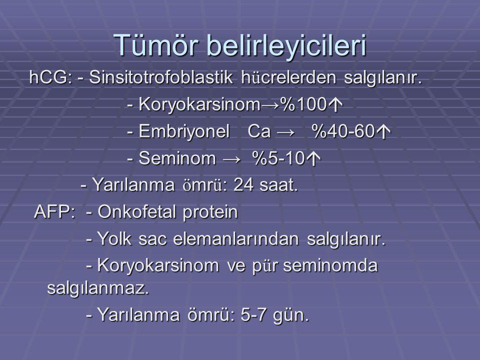 Tümör belirleyicileri