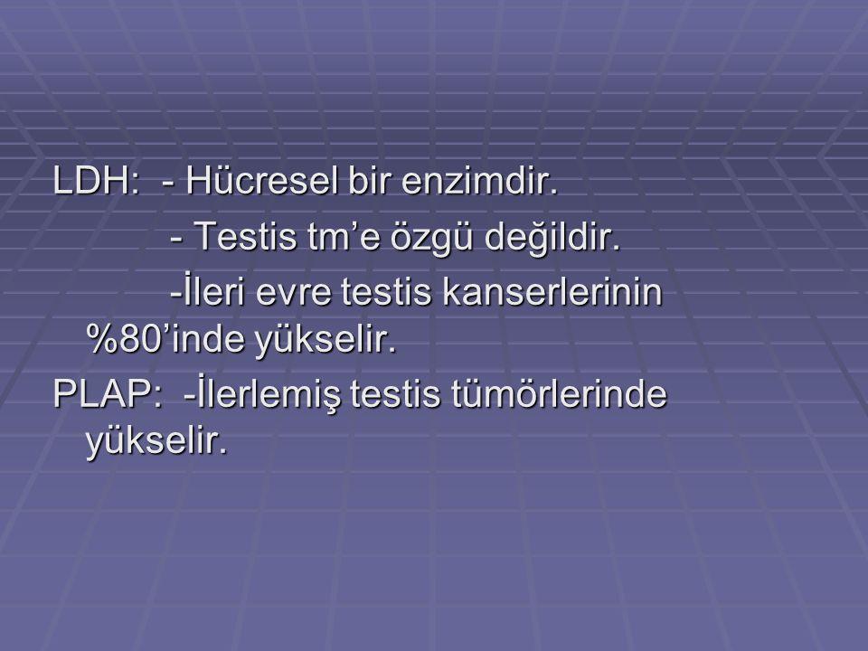 LDH: - Hücresel bir enzimdir.