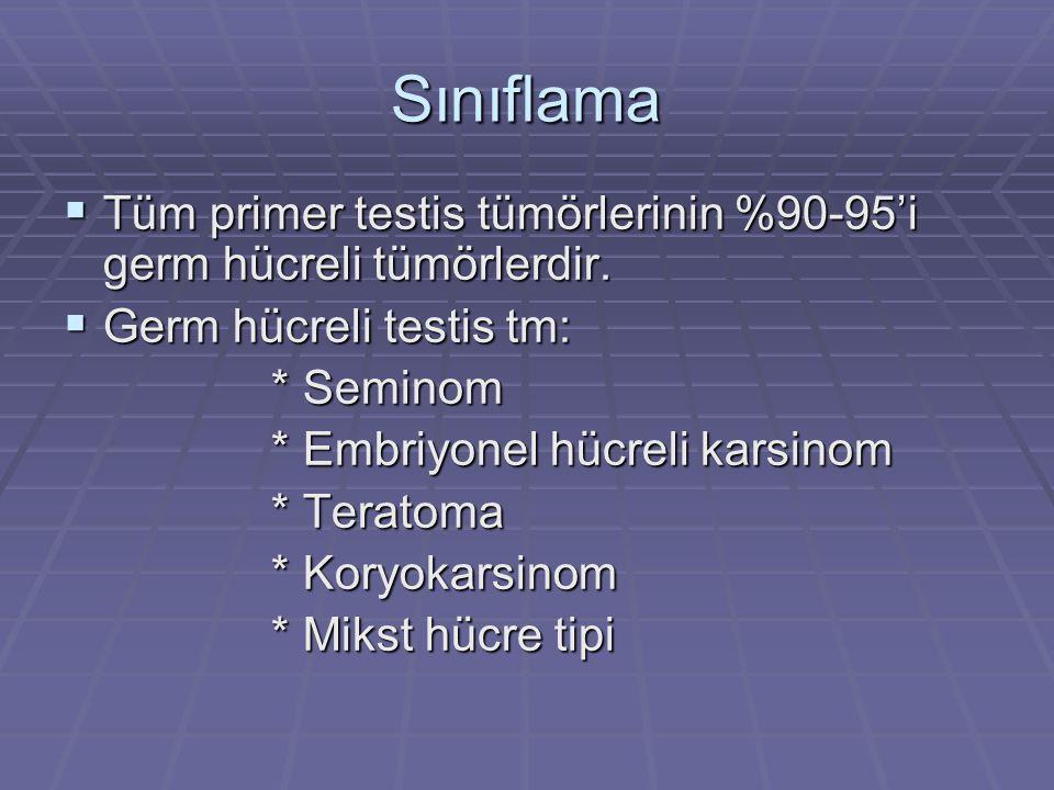 Sınıflama Tüm primer testis tümörlerinin %90-95'i germ hücreli tümörlerdir. Germ hücreli testis tm: