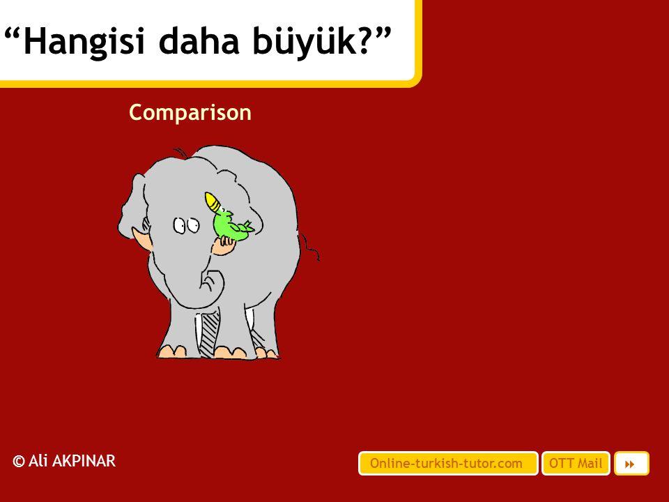 Hangisi daha büyük Comparison © Ali AKPINAR 