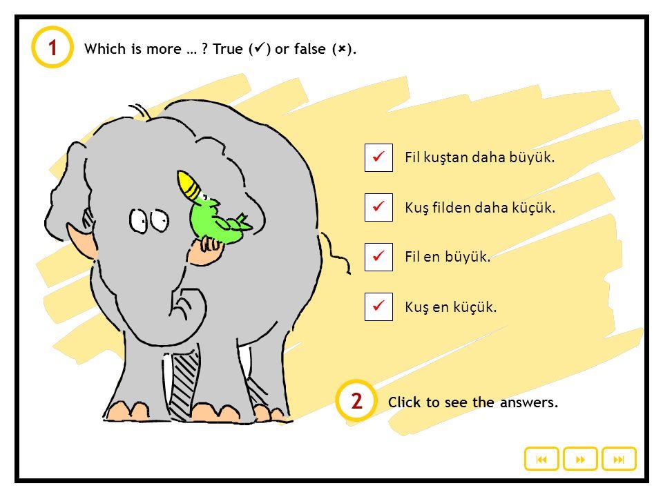 1 2  Fil kuştan daha büyük.  Kuş filden daha küçük.  Fil en büyük.