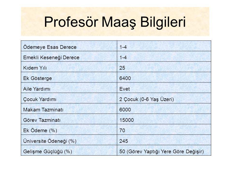 Profesör Maaş Bilgileri
