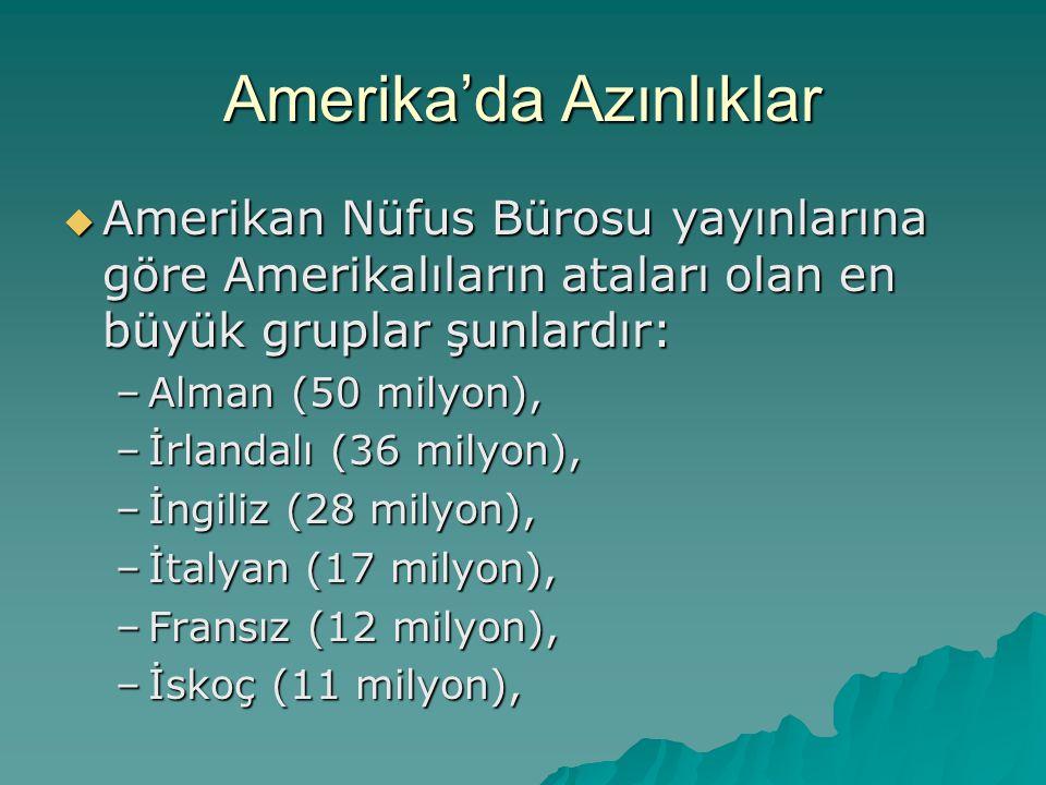 Amerika'da Azınlıklar