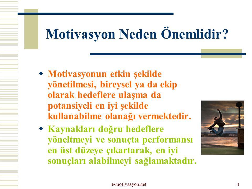 Motivasyon Neden Önemlidir