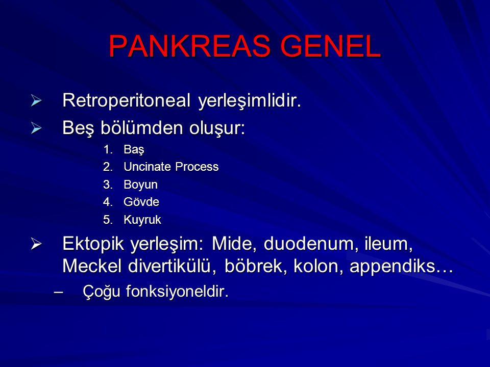 PANKREAS GENEL Retroperitoneal yerleşimlidir. Beş bölümden oluşur: