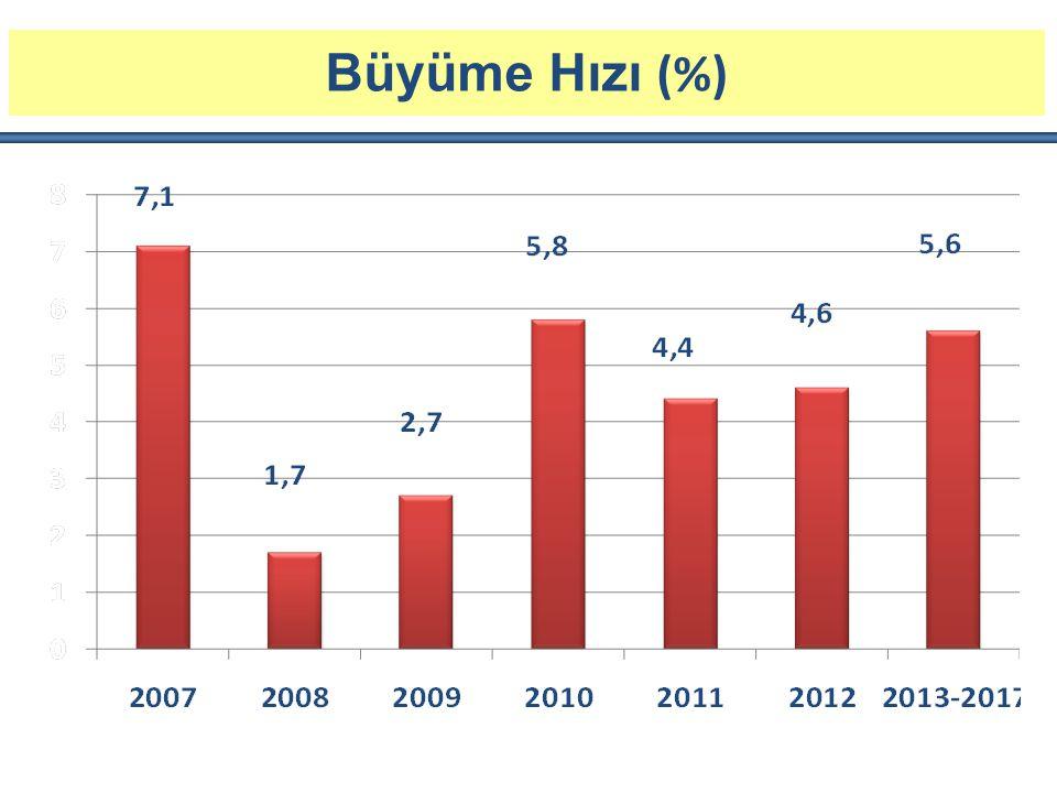 Büyüme Hızı (%)