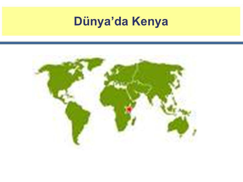 Dünya'da Kenya Kenya Doğu Afrika'ya açılan bir kapı olup; bölgenin finans, ulaşım ve idare merkezidir.