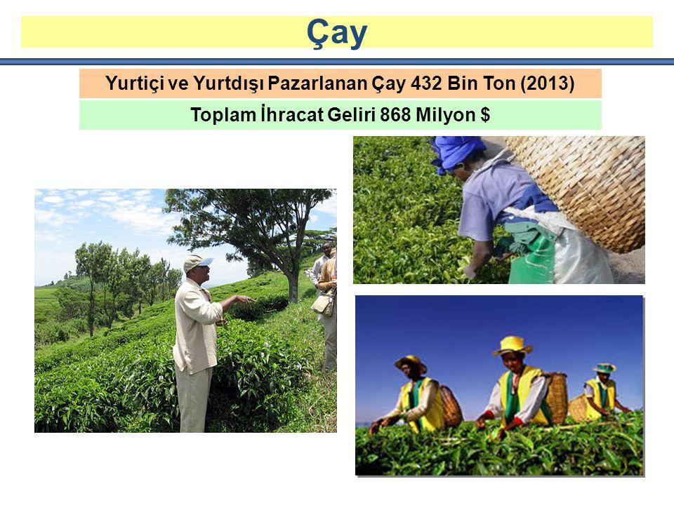 Çay Yurtiçi ve Yurtdışı Pazarlanan Çay 432 Bin Ton (2013)