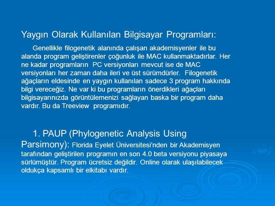 Yaygın Olarak Kullanılan Bilgisayar Programları: