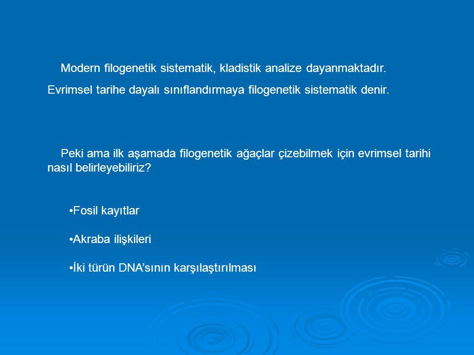 Modern filogenetik sistematik, kladistik analize dayanmaktadır.