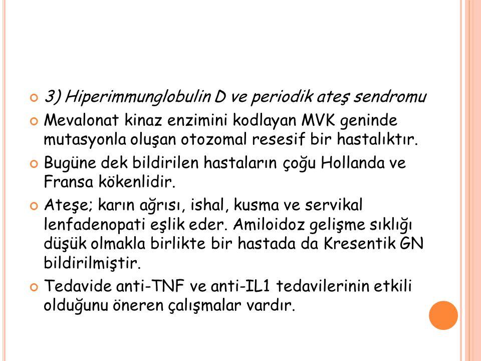 3) Hiperimmunglobulin D ve periodik ateş sendromu