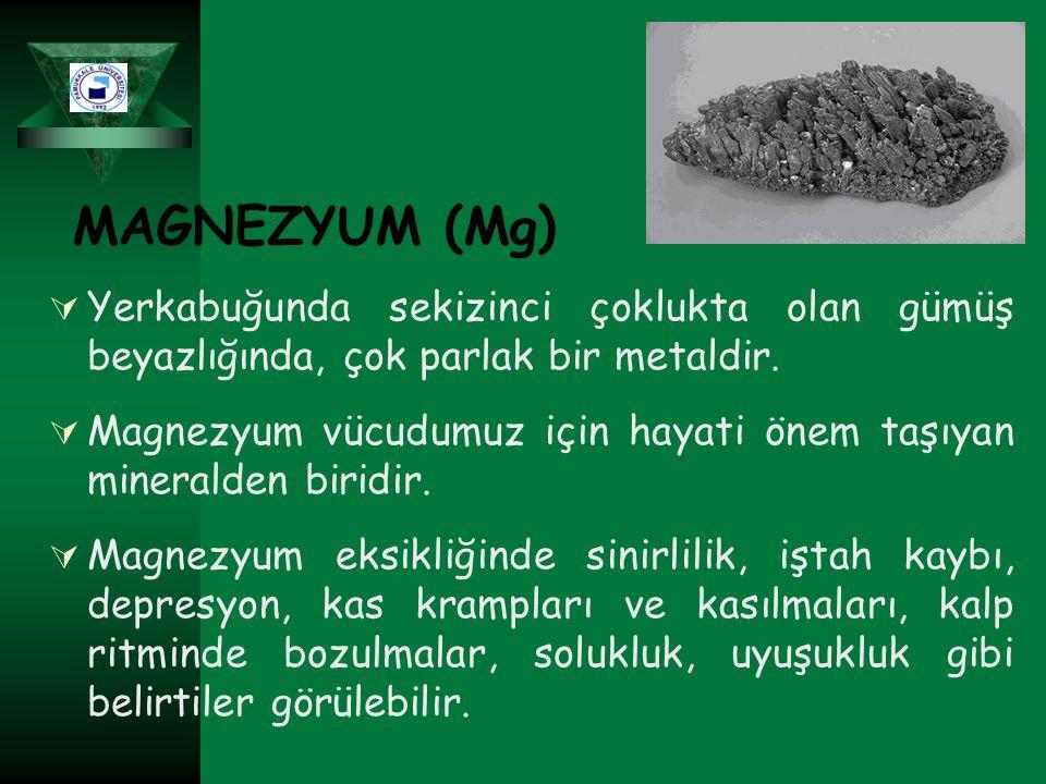 MAGNEZYUM (Mg) Yerkabuğunda sekizinci çoklukta olan gümüş beyazlığında, çok parlak bir metaldir.