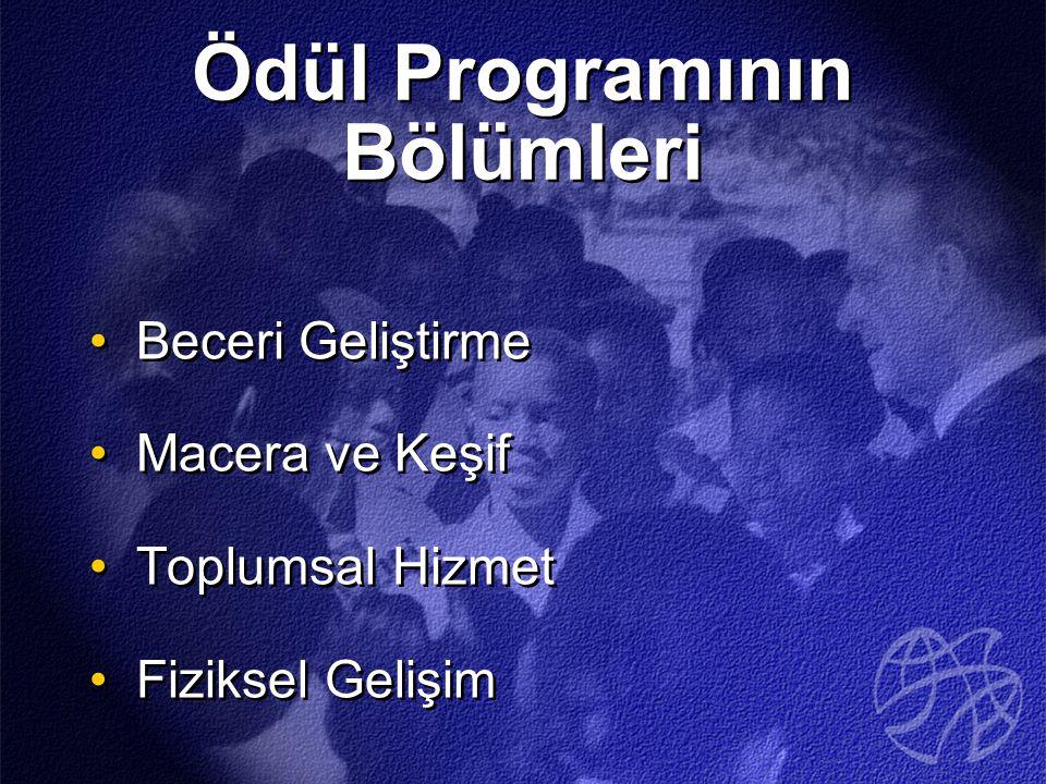Ödül Programının Bölümleri