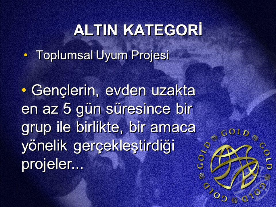 ALTIN KATEGORİ Toplumsal Uyum Projesi.