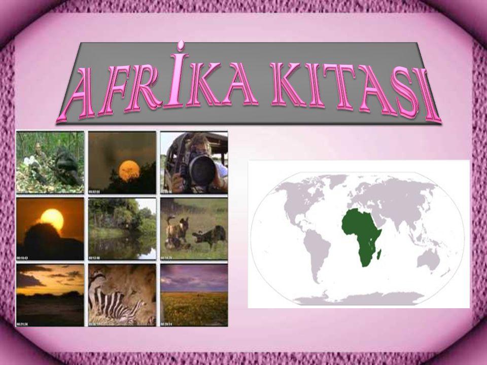 AFRİKA KITASI