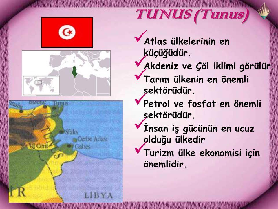 TUNUS (Tunus) Atlas ülkelerinin en küçüğüdür.