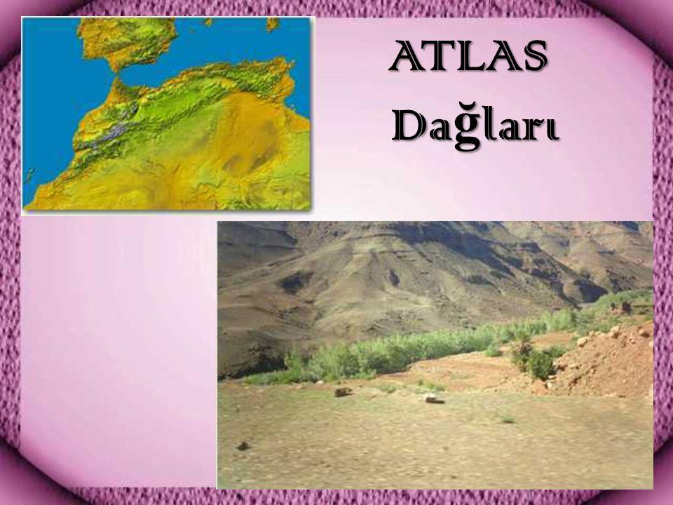 ATLAS Dağları