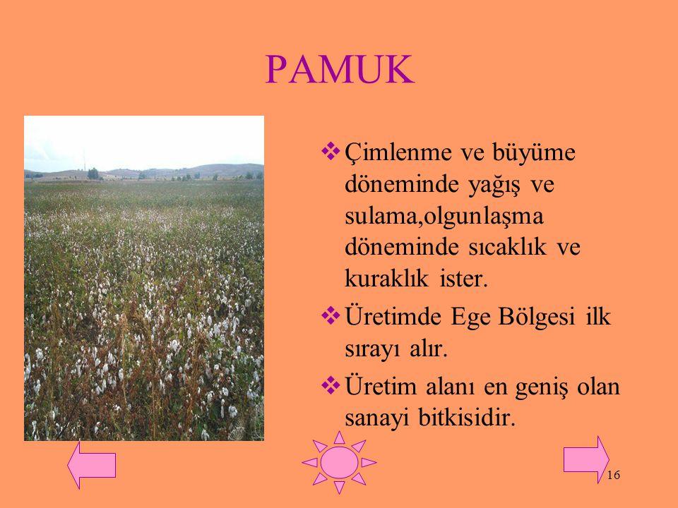 PAMUK Çimlenme ve büyüme döneminde yağış ve sulama,olgunlaşma döneminde sıcaklık ve kuraklık ister.